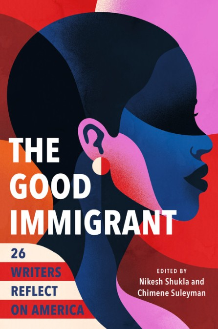 Image result for the good immigrant 26 writers reflect on america